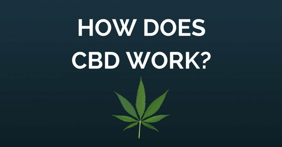 What Is CBD? Acronym & Definition of Cannabidiol