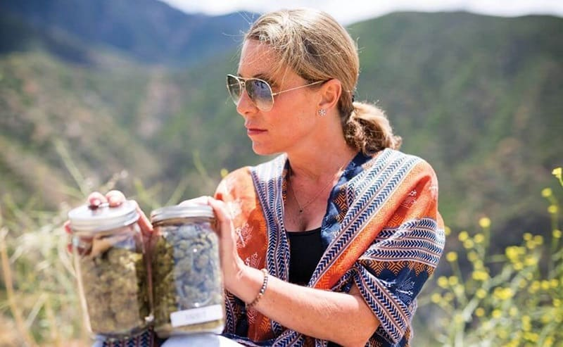A Deep Dive Into Ganjarunner Cannabis Delivery Service