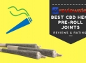 Best CBD Hemp Joints – Terpene Infused Pre-Roll Joints