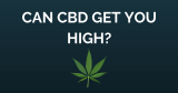 Can CBD Get You High?